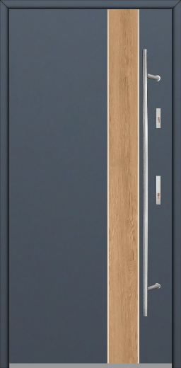 Fargo Fi01B -  unique design front entry door