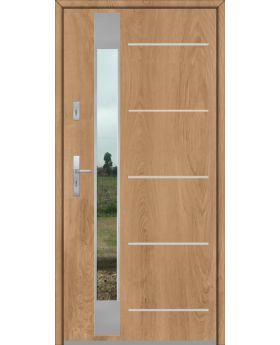 Fargo Fi07D - solid entrance door
