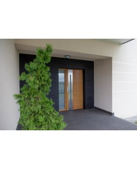 Longcal - solid wood front doors / oak or pine entrance door